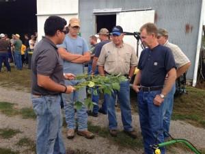 John Ortiz Discusses Soybean Plant Comparison
