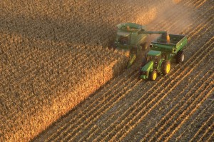 Global Growth Demands More Yield