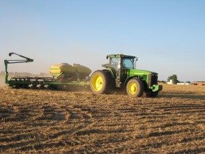 Plant Soybeans in Early May