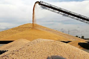Record Harvest Crimps Grain Elevators