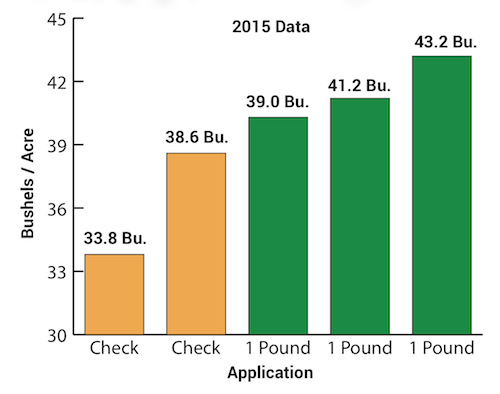 BigSweetYield Data