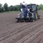 BigYield Soybean Test Plot Update