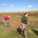 Bill and Steve Evaluating Soybeans