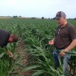 Franklin Weaver with Bob Joehl Inspecting Corn