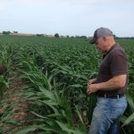 Franklin Weaver with Bob Joehl Inspecting Corn 3