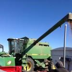 Grain Transfer 2