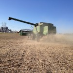 Soybean Harvest 1