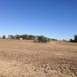 Soybean Harvest 9