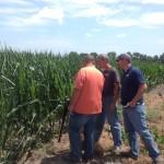 Spectrum Technologies Showcase at The Farm