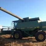 Wheat Harvest 3