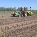 Corn Planting 1
