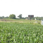 Smart Plot Soybeans 2