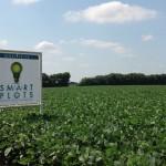Smart Plots Soybeans 1