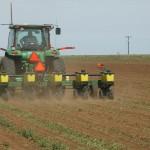 Corn Planting on Target