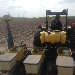 Soybean Planting 4