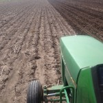 Soybean Planting 5