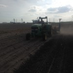 Soybean Planting 12