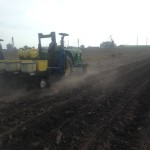 Soybean Planting 14