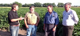 Biological Organisms Create Big Crop Yields – Part 1