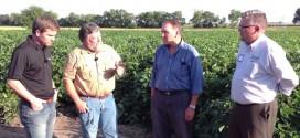 Biological Organisms Create Big Crop Yields – Part 2