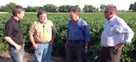 Biological Organisms Create Big Crop Yields – Part 3