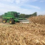 Record Corn and Soybeans