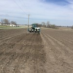 Soybean Planting Date and Maturity
