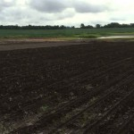 Soybean Planting Update June 13 2015