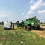 Wheat Harvest 04