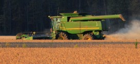 Good Yields on Early Harvested Soybeans