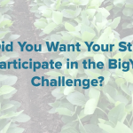 Participate-in-the-BgYield-Challenge