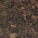 Soil Carbon Stores