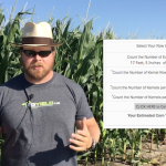 Estimating Corn Yields