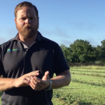 Cover Crops at BigYield