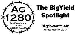 BigYield-Spotlight-BigSweetYield