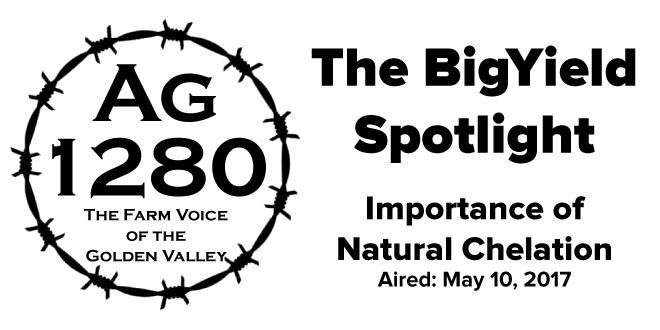 BigYield Spotlight - Importance of Natural Chelation