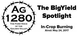 BigYield Spotlight - In-Crop Burning