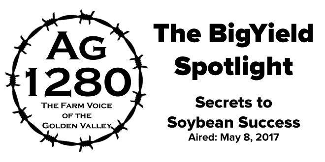 BigYield Spotlight Secrets to Soybean Success
