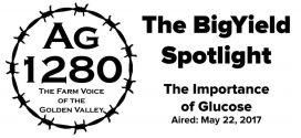 BigYield Spotlight - The Importance of Glucose