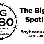 BigYield-Spotlight-Soybeans-and-SDS