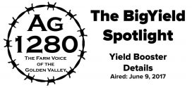 BigYield-Spotlight-Yield-Booster-Details