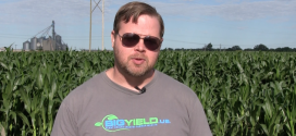Top Five Things to Know About In-Crop Burning