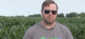 Use Plant Tissue Analysis to Discover Yield-Limiting Factors