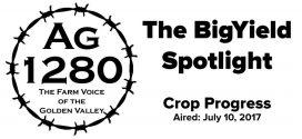 The-BigYield-Spotlight-Crop-Progress