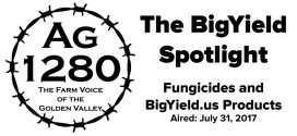 The-BigYield-Spotlight-Fungicides-and-BigYield-Products