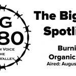 The-BigYield-Spotlight-Burning-Organic-Corn