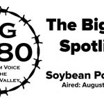 The-BigYield-Spotlight-Soybean-Podworms