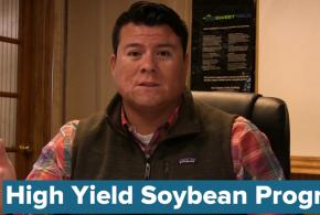 High Yield Soybean Program for 2018