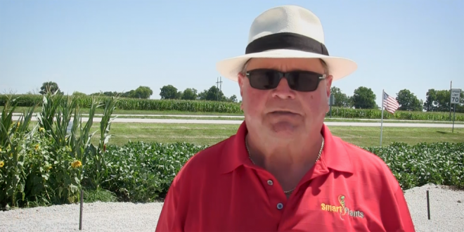 Final Reminder for Sweet Corn Day