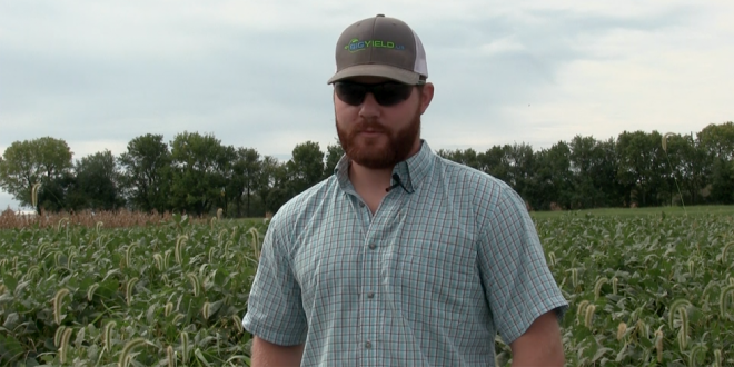 Wade Sprenkle Discusses His First Year Using BigYield Products